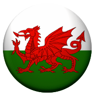 Welsh Flag Complete