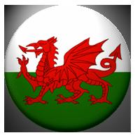 Welsh Flag Complete